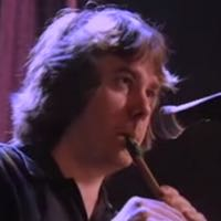 Galway girl on tin whistle steve earl
